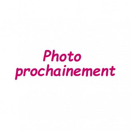 Ceinture porte billets fermeture éclair grande capacité Voyageur